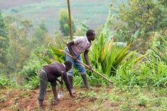 африканский работник стоковые изображения rf