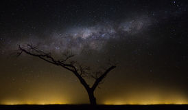 Африканский рай Стоковая Фотография RF