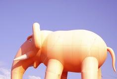 Африканский слон в саванне на заходе солнца стоковая фотография rf