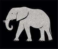 африканский слон Стоковое Изображение
