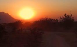 африканский южный заход солнца стоковые изображения