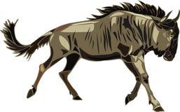 африканский wildebeest серии животных иллюстрация штока