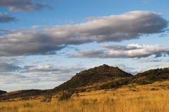 африканское голубое небо bush вниз стоковая фотография