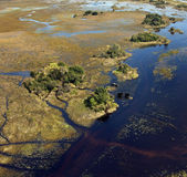 африканское okavango слонов перепада Ботсваны Стоковые Фото