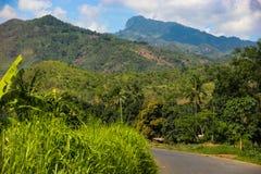 Африка, Танзания, Udzungwa Стоковые Изображения