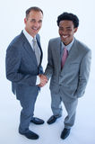 афро американские бизнесмены кавказские Стоковое Фото