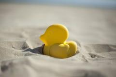Аффикс игрушки пляжа утки лета желтый в сухом песке Селективный fo Стоковая Фотография