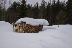 лачуга деревянная Стоковое Изображение