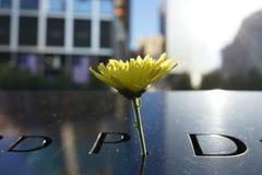 14-ая годовщина 9/11 88 Стоковое Изображение