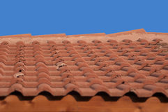 ая черепицей крыша Стоковое фото RF