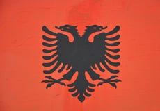 албанский флаг Стоковое Изображение