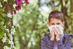 аллергически Мальчик имеет аллергии от цветня цветка стоковые изображения rf