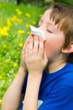 Аллергия сезона Стоковые Фото
