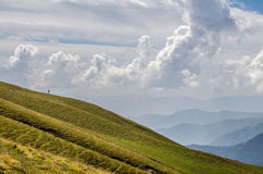 Али Bugyal, Uttarakhand Стоковые Фото