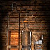 алкогольные напитки Стоковые Фотографии RF