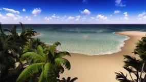 ладонь острова Стоковая Фотография