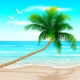 ладонь пляжа иллюстрация вектора