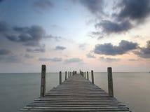 ладонь pacific океана kood koh острова кокоса стоковое фото