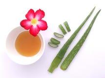 Алоэ vera и мед на белой предпосылке Стоковые Изображения