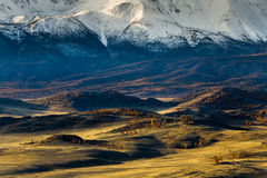 Алтай Горы Золотистая осень голубое небо Стоковая Фотография