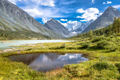 Алтай Altai Стоковые Изображения