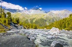 Алтай Altai Стоковое Изображение