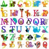 Алфавит вектора животный тематический Стоковое Изображение RF