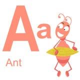 Алфавит вектора с животными a Стоковое Изображение