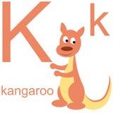 Алфавит вектора с животными k Стоковое Изображение