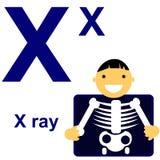 Алфавит вектора с животными x Стоковые Изображения