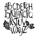 Алфавит вектора с лист и жолудями дуба иллюстрация штока