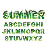 Алфавит лета зеленый, письма прописного вектора тропические Стоковое Изображение RF