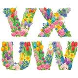 Алфавит цветков VXUW Стоковые Фото