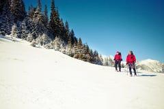 2 альпиниста в горах в зиме Стоковая Фотография