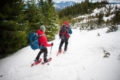2 альпиниста в горах в зиме Стоковое Изображение RF