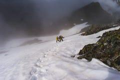2 альпиниста в подъеме гор Стоковые Изображения RF