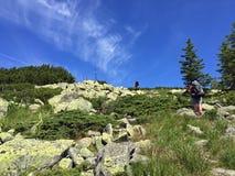 Альпинисты идя вверх гора Стоковое фото RF