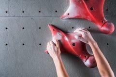 Альпинист вручает держать искусственный валун в взбираясь спортзале стоковое фото rf