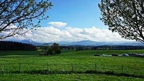 Альпы в расстоянии Стоковое Изображение RF