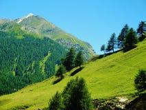 Альпы Стоковое Изображение RF