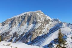 Альп в зиме Стоковое Изображение