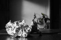 Алюминиевая бумага подробно и завод на предпосылке Стоковая Фотография