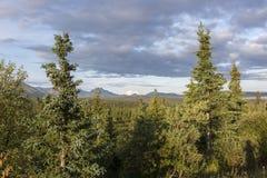 Аляска, последняя граница США Стоковая Фотография