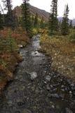Аляскская заводь осенью Стоковая Фотография RF