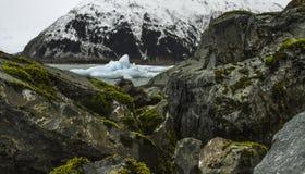 Аляскский айсберг Стоковые Фото
