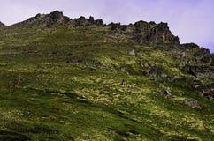 Аляскский пик Стоковые Изображения RF