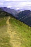 Аляскский трек Стоковая Фотография RF