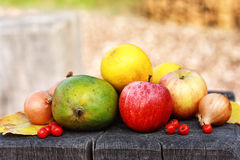 Аutumn still life. Autumn still life with fruit and vegetables stock images