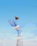 Бабочка в ваших руках стоковые изображения