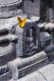 Бабочка и Будда, Катманду, Непал стоковые фотографии rf